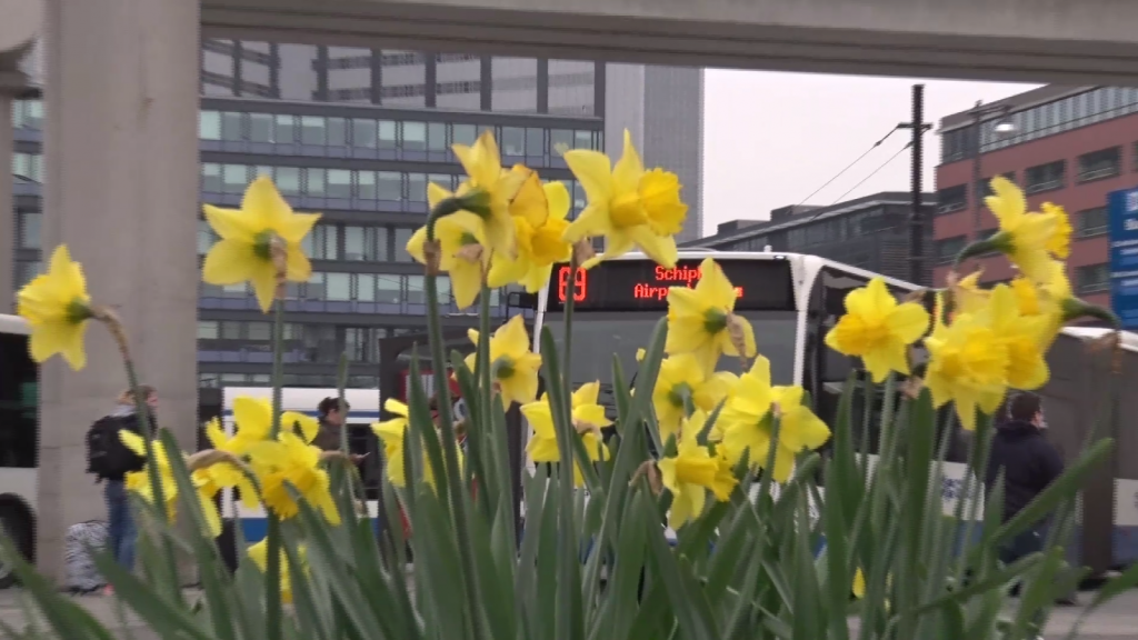 Amsterdam Informeert: Gratis OV voor ouderen
