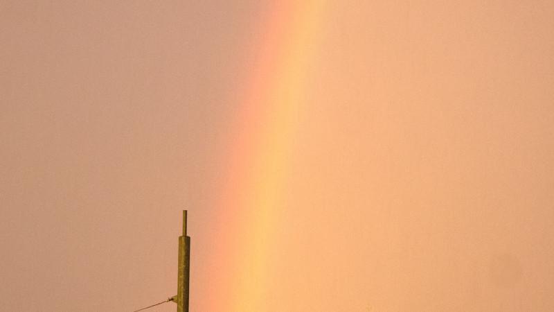 Westertoren-regenboog.jpg